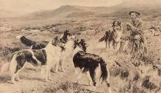 I love this image-   History and Breeding Program - Vintage Kennels at Wishin' Star Farm
