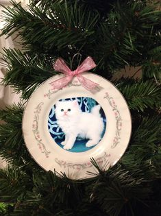 Harry Potter inspired Umbridge cat plate kitten plate Christmas ornament by TheRoomOfAcquirement on Etsy