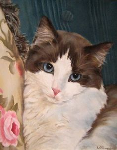 ragdoll cat portrait custom oil painting blue eyes painted with love, painting by artist JEANNE ILLENYE