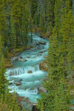 Jasper National Park, Alberta, Canada | A1 Pictures