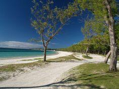 Belle Mare, Mauritius - Google Search