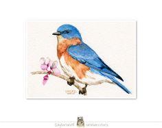 Bluebird 5x7 Art Print of Original by SaylorWolfWatercolor on Etsy