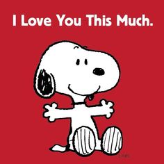 So good to know Snoopy!