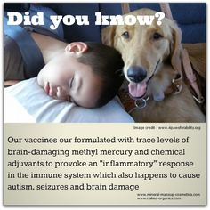 Several Modern Day Vaccines have Serious Side Effects Seizures, Side Effects, Immune System, Did You Know, Infographics, No Response, Minerals, Cosmetics, Foods