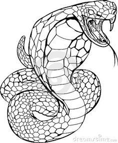 662 Best Snake Images In 2020 Snake Snake Art Snake Tattoo