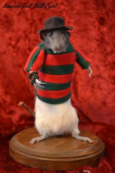 FREDDY KRUEGER Taxidermy Rat Horror Gore by HellBentHeavenSent, $80.00