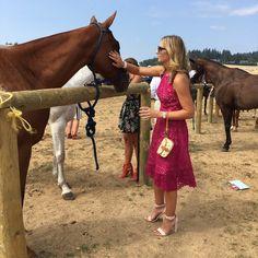 Polo, Horses, Animals, Polos, Animales, Animaux, Animal, Animais, Tee