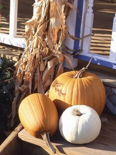 Varying pumpkin sizes can add depth to a fall porch display: http://www.bhg.com/decorating/seasonal/fall/pretty-pumpkins-for-fall/?socsrc=bhgpin093014atrioofcolor&page=23