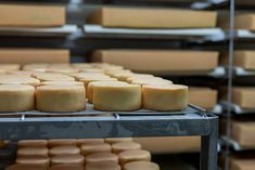 BIO aus Österreich – Von der Milch zum Käse | Koch mit Herz Bio Siegel, Lab, Dairy, Cheese, Food, Food Safety, No Sugar, Essen, Labs
