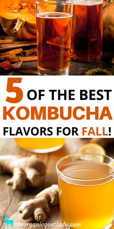 These are the best fall kombucha flavors! Kombucha is a great fermented beverage for the gut! Drink your probiotics. These recipes and ideas for DIY homemade kombucha are the best flavors for fall. Check out this post and try all of them! #Kombucha #FermentedFoods #NaturalRecipes #NaturalLiving #Homesteading #SelfSufficiency Ginger Kombucha Recipe, Best Kombucha, Make Your Own Kombucha, Kombucha Flavors, Probiotic Drinks, Kombucha Tea, Medditeranean Diet, Diet And Nutrition