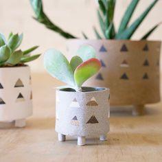Heidi Anderson's Triangle Planter Pots