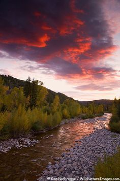 Kebler Pass of Crested Butte, Colorado. Red sky with beautiful trees and a river.