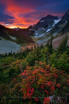 Early fall color on a spectacular sunrise morning at Cascade Pass in North Cascades National Park, Washington.