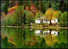 Karagöl (Black Lake), Borçka, Artvin ⛵ Eastern Blacksea Region of Turkey ⚓ Östliche Schwarzmeerregion der Türkei #karadeniz #doğukaradeniz #artvin #travel #nature #ecotourism #cittaslow #lake #mythological #colchis #thegoldenfleece #thecolchiandragon #amazonwarriors #tzaniti