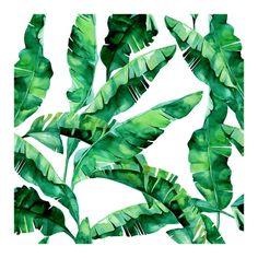 Tropical banana leaves Poster in der Gruppe Poster / Größen und Formate / 50x50cm bei Desenio AB (2042)