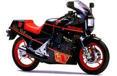 Suzuki RGV250 Gamma RGV-250 sport