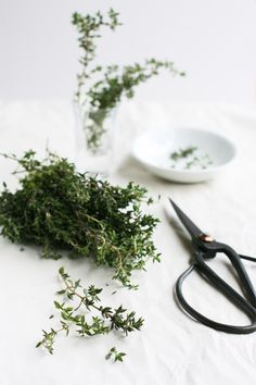 thyme / photography: sneh roy - I love using fresh herbs from my garden!
