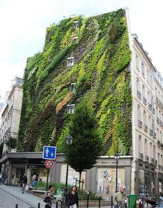 In Paris, A Vertical Garden Makes The City Greener - DesignTAXI.com