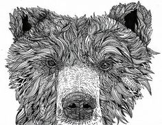 Bear Art Print by Lily Livingston Woodland Creatures, Woodland Animals, Animal Sketches, Animal Drawings, Black And White Artwork, Ink Pen Drawings, Poster Prints, Art Prints, Posters