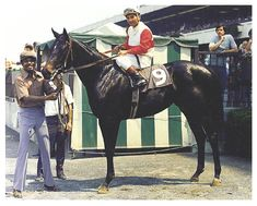 The Legacy Of Ruffian 41 Years Later - Horse Racing Nation Pretty Horses, Beautiful Horses, Derby Winners, Sport Of Kings, Thoroughbred Horse, Racehorse, Horse Racing, Equestrian, Animals