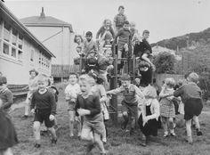 Jungle Gym 1953