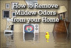 How to Remove #Mildew Odors from your #Home