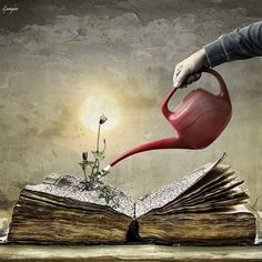 water the mind with a book, [by Christine Ellger], at Rose cottages and gardens