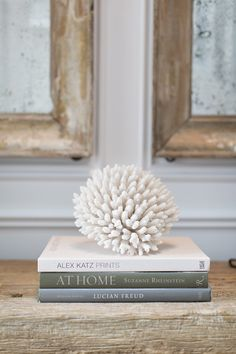 Shop Design Chic - Design Chic I love coral resting on favorites books. The weathered wood console is amazing - the beach at its best!