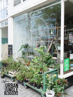 Greens in cafes, restaurants and shops via LABEL1114