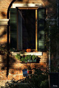 Pumpkin window by annacz64 #fadighanemmd