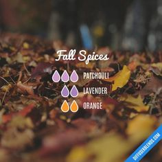 Fall Essential Oils, Essential Oil Diffuser Blends, Essential Oil Uses, Essential Oil Combinations, Young Living, Diffuser Recipes, Living Oils, Air Freshener, Pink Hair