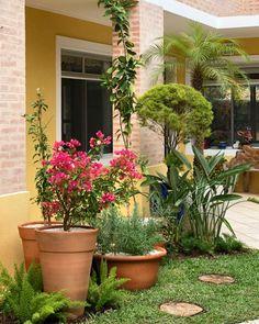 Modelos de jardim: 60 ideias de cantinhos verdes para você se encantar Garden Templates: 60 ideas for green corners that will enchant you Garden Trellis, Balcony Garden, Garden Planters, Corner Garden, Garden Angels, Green Life, Hanging Planters, Small Gardens, Garden Paths