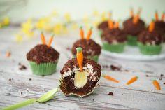 Sallys Rezepte - Maulwurf Cupcakes / Maulwurf Hügel