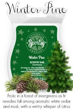 I like it, but a bit strong. -- Frolic in a forest of evergreens as fir needles fall among aromatic white cedar and musk, with a wintry whisper of citrus.
