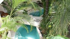 hotel la tortuga swimming pool - Google Search