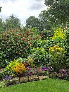 The Mill Garden, Warwick, June 2016
