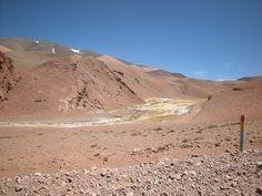 Ruta Nacional 76 entre Villa Unión y Laguna Brava. en la vega húmeda con pastos hay camélidos.