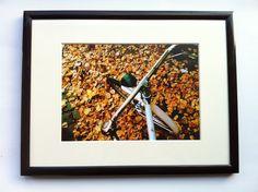 Rad im Herbst - A4 Glossy – Druck