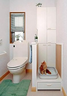 Cat friendly house with litter box in the bathroom Cool Cat Beds, Cat Apartment, Himalayan Cat, Cat Scratcher, Cat Colors, Cat Furniture, Litter Box, Pet Accessories, House Design