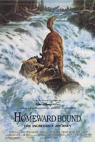 Homeward Bound: The Incredible Journey - great movie!!