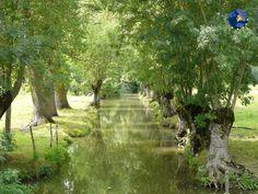 Le Grand Site du Marais Poitevin, surnommé à juste titre la « Venise verte » de la France, est l'un des plus grands marais d'Europe. Situé près de l'Ile de Ré et La Rochelle sur la côte atlantique, il offre une mosaïque de paysages :  - la baie de l'Aiguillon et le littoral, paradis des oiseaux,  - le marais desséchés et ses paysages ouverts,  - la Venise verte, véritable cathédrale de verdure avec son labyrinthe de voies d'eau.  #maraispoitevin #veniseverte #poitoucharente #EDEN