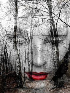 The face in the forest von Gabi Hampe                              …                                                                                                                                     (Beauty Art Dark)