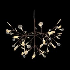 LED Brown and Cream leaf Pendant Wall Lights, Ceiling Lights, Leaf Pendant, Light Fittings, Cool Lighting, Chandelier, Delicate, Things To Come, Leaves