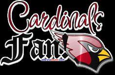 Arizona Cardinals fan we rock AZ FOOTBALL