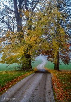 The Road is Calling by Lars van de Goor - Photo 176288295 / 500px