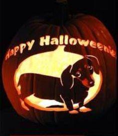 Happy Halloweenie.