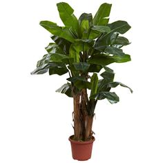 7' Giant Triple Stalk Banana Tree UV Resistant (Indoor/Outdoor) >>> Find out more about the great product at the image link.
