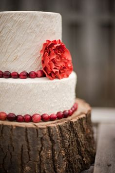 winter wedding cake with cranberries