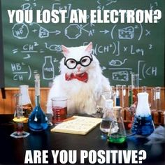 Chemistry Cat with another science joke.