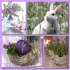 Collages, I Need A Hobby, Lavender Crafts, Color Collage, Beautiful Collage, Coloring Easter Eggs, Hello Spring, Four Seasons, Seasonal Decor
